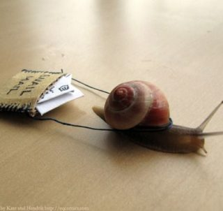 Agency New Business-Embrace The Snail